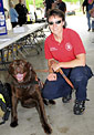 Search and rescue dog and handler
